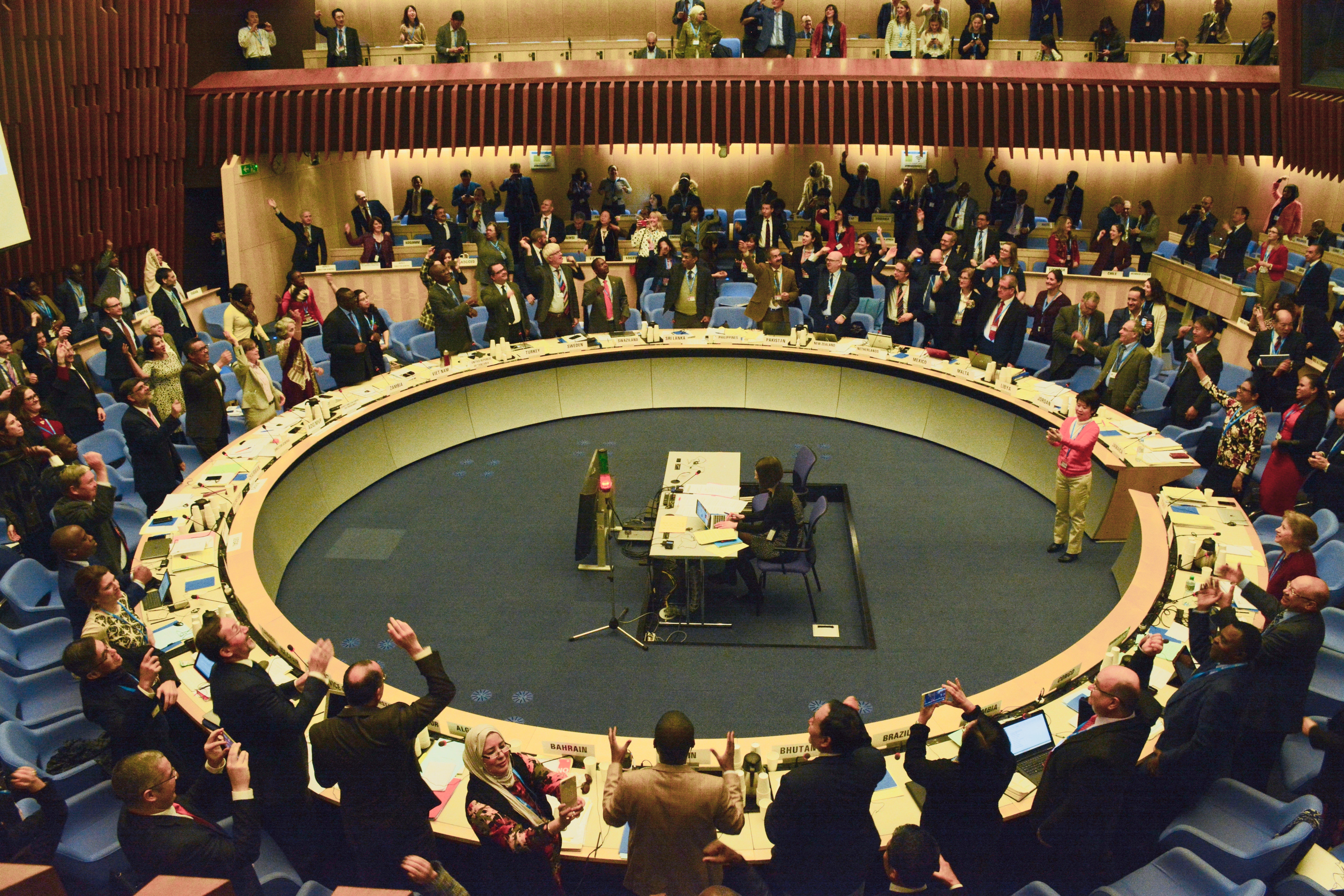 Call for IFMSA Delegation to 144th WHO EB Meeting